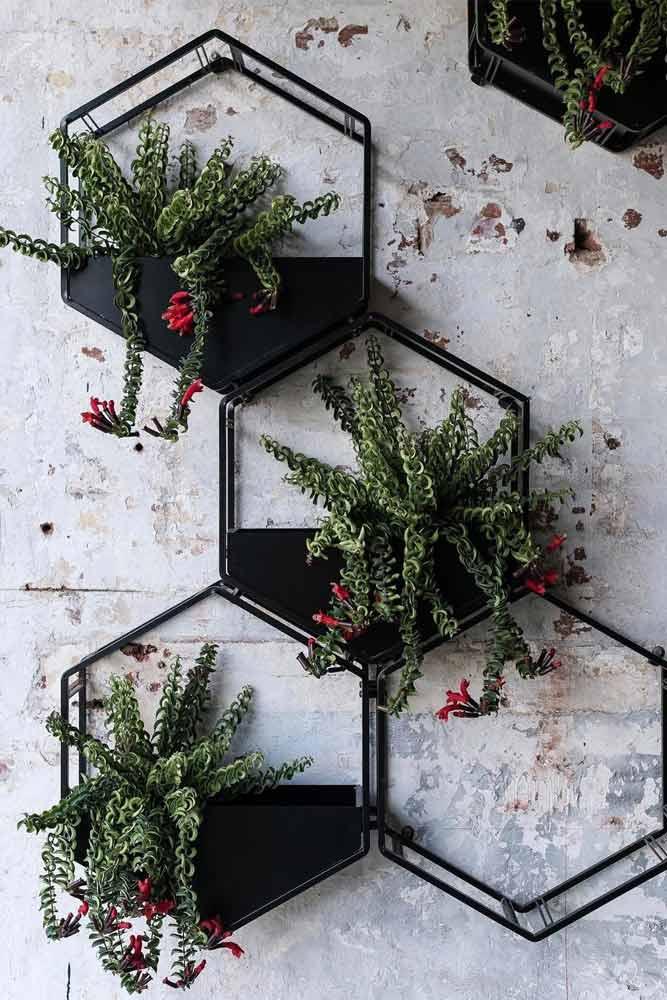 Conceptions de pots muraux métalliques hexagonaux