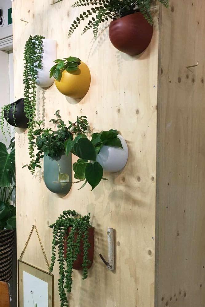 Pots de plantes murales colorées