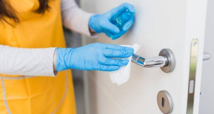Top 5 des solutions de nettoyage domestique pour garantir des maisons sans virus